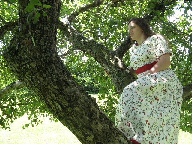 still in the tree